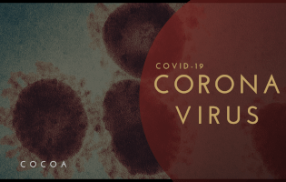 コロナウイルス・インフルエンザのアメリカ留学情報のメインイメージ