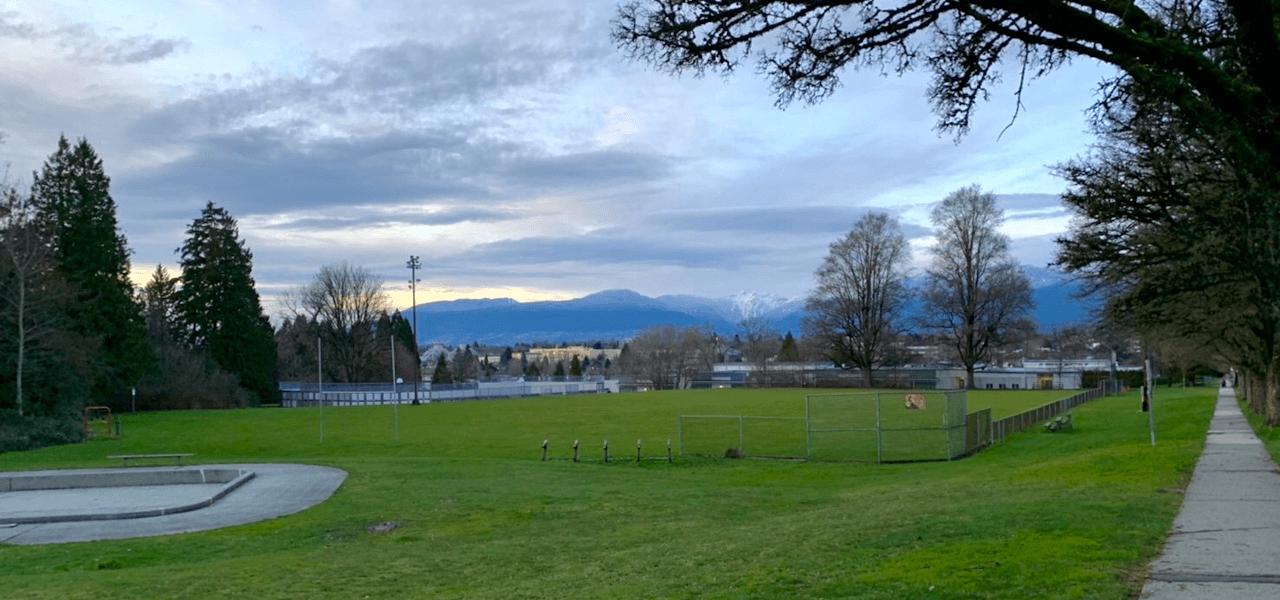 空と芝生の風景写真