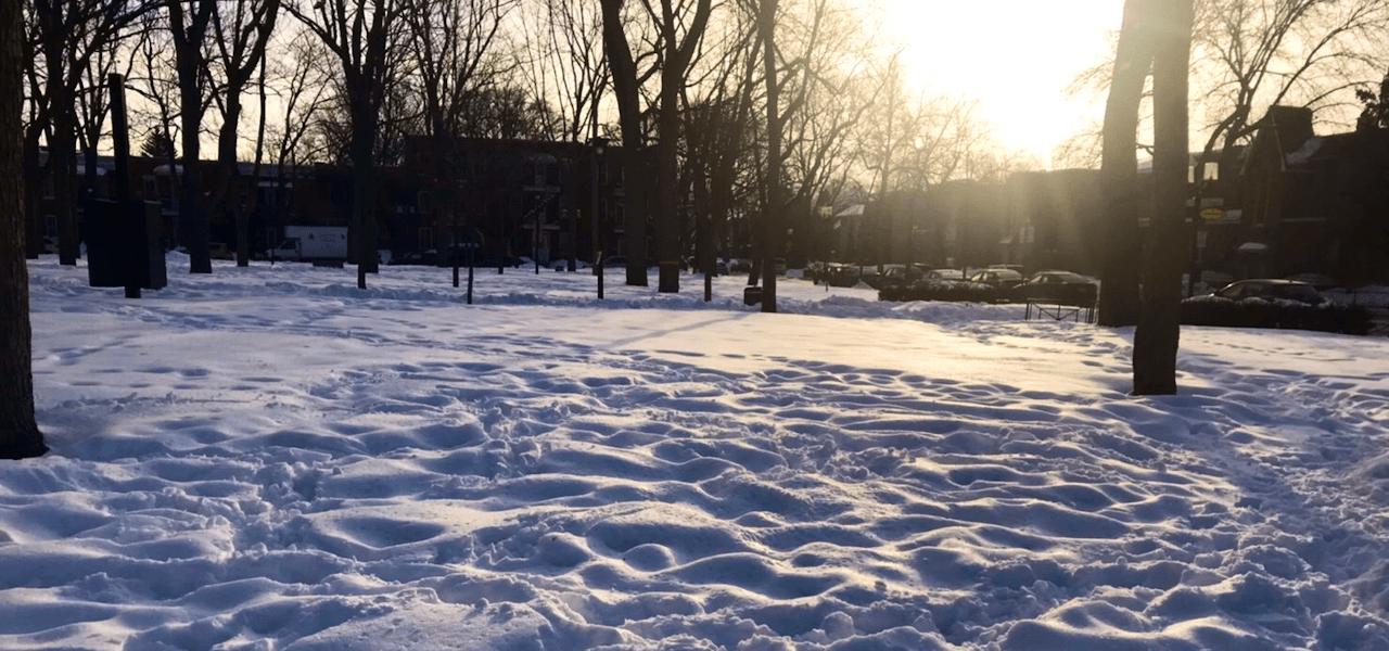 冬のモントリオール雪と光の風景