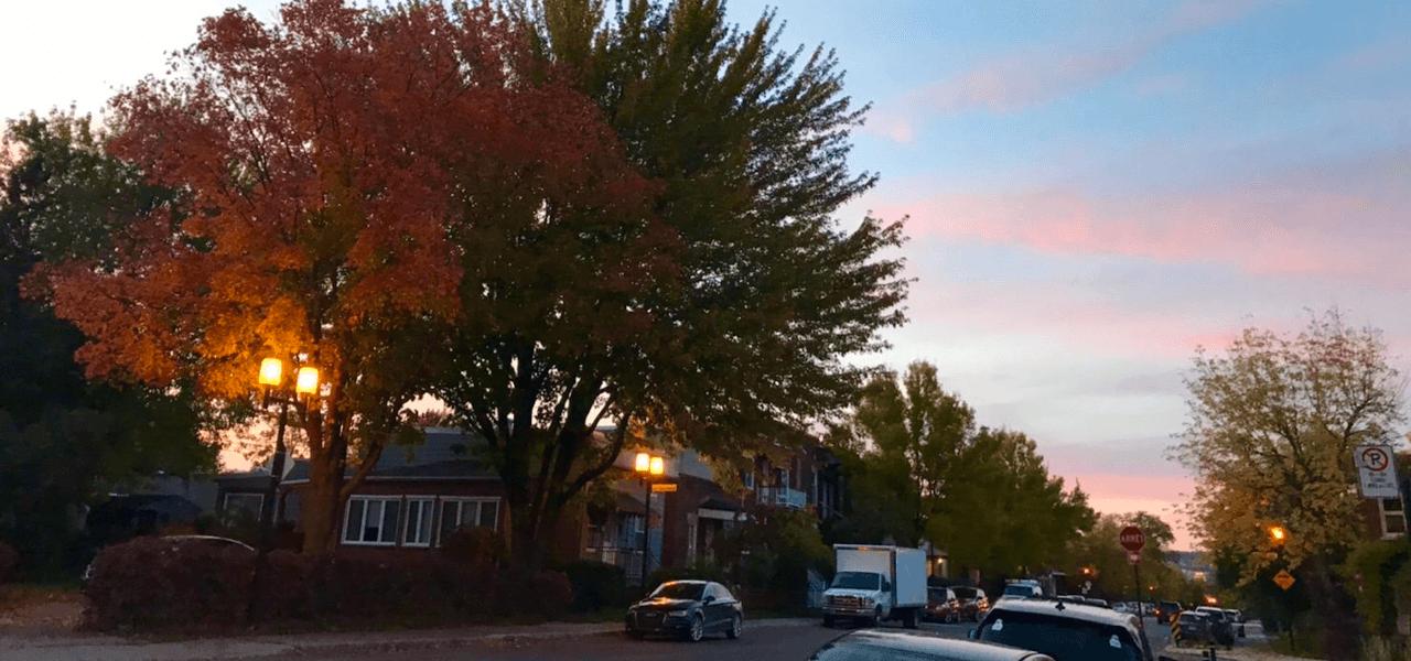 日暮れが近くなったカナダの空と木の風景