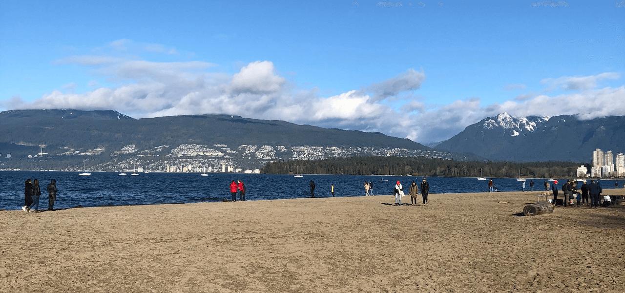 海と山の写真