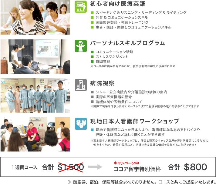 初心者向け医療英語・病院視察・日本人看護師とのワークショップ