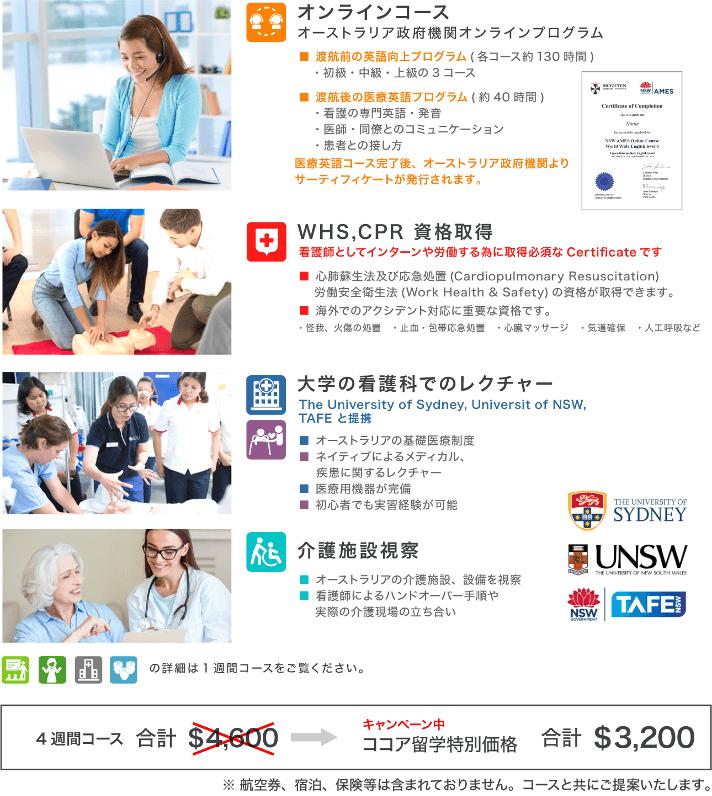オンラインコース・WHS資格取得・初心者向け医療英語・病院視察・日本人看護師とのワークショップ・介護施設視察