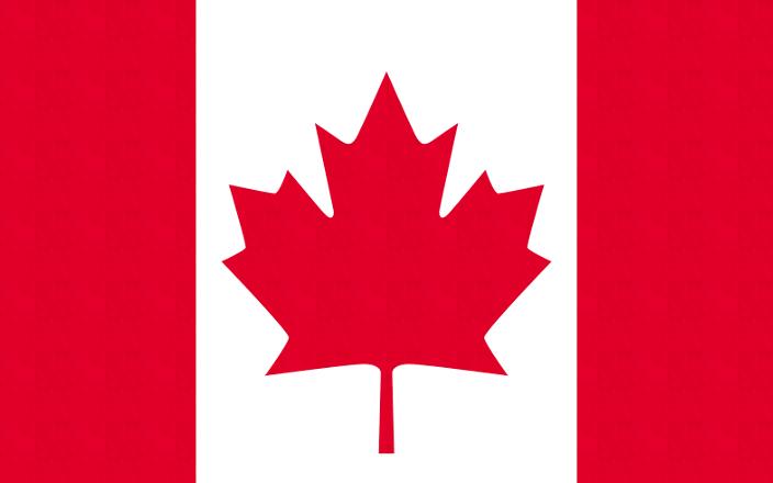 高校留学カナダ インターン・ボランティアのイメージ