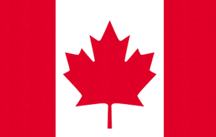 高校生カナダ留学・マーケティング調査プログラム