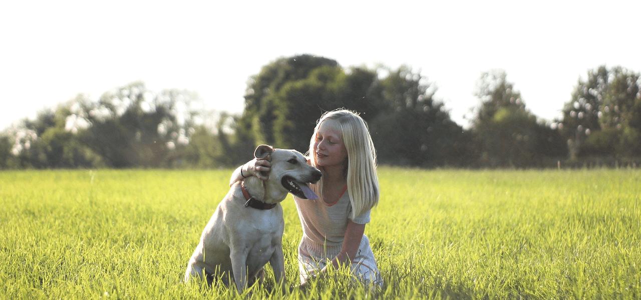 犬と戯れる少女