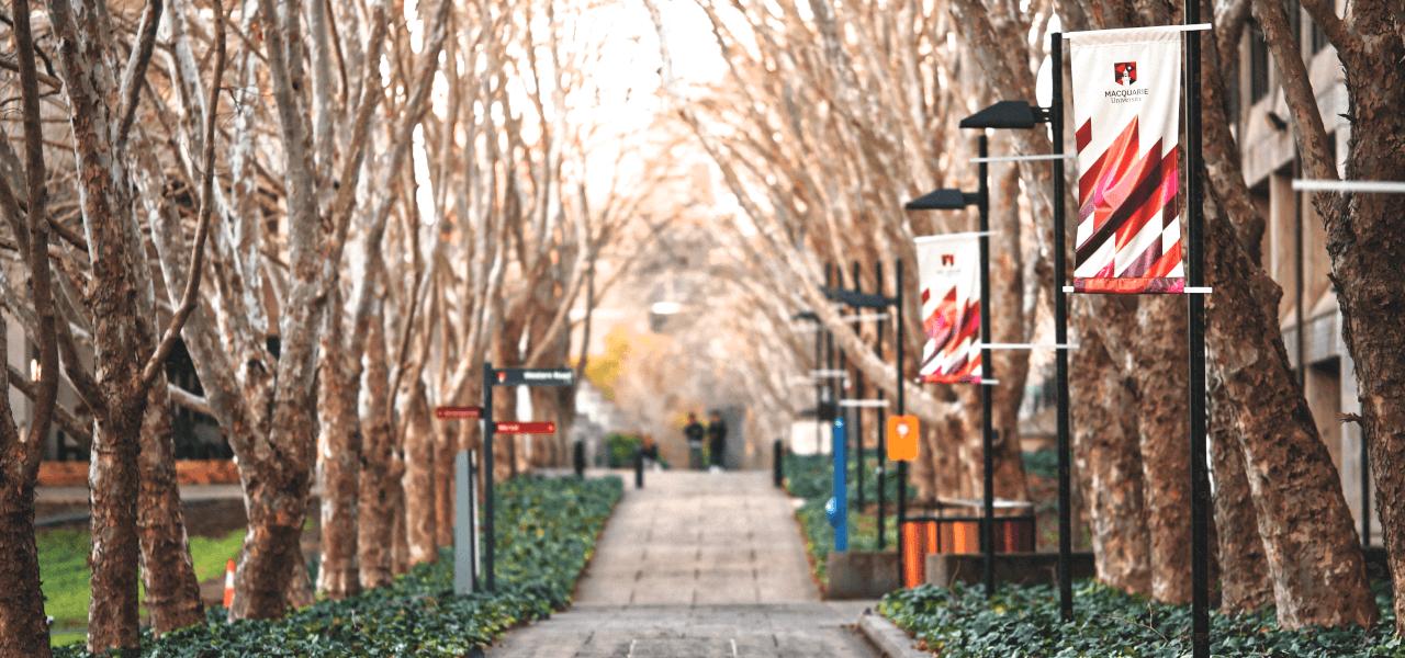 海外の歩道