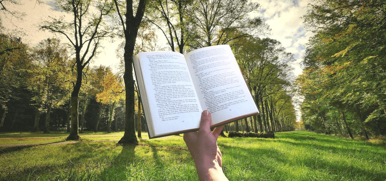 森の中で本を読む留学生