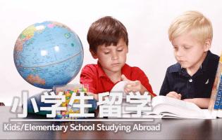 小学生の留学