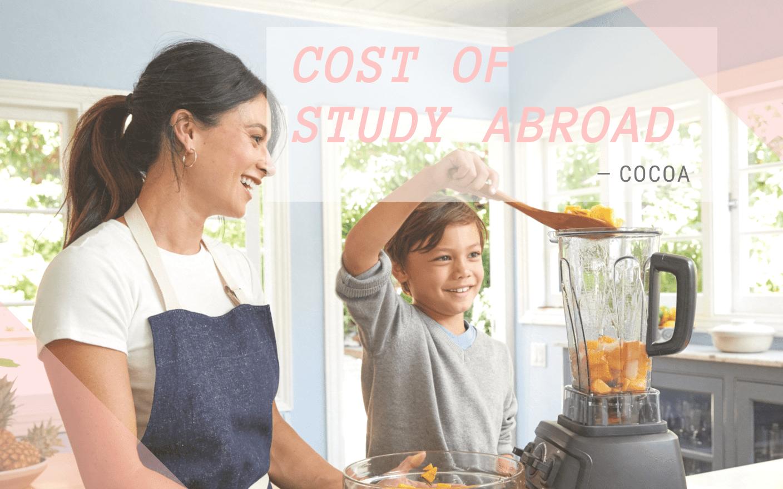 親子留学の費用はどれくらい?節約方法もズバリ!のイメージ
