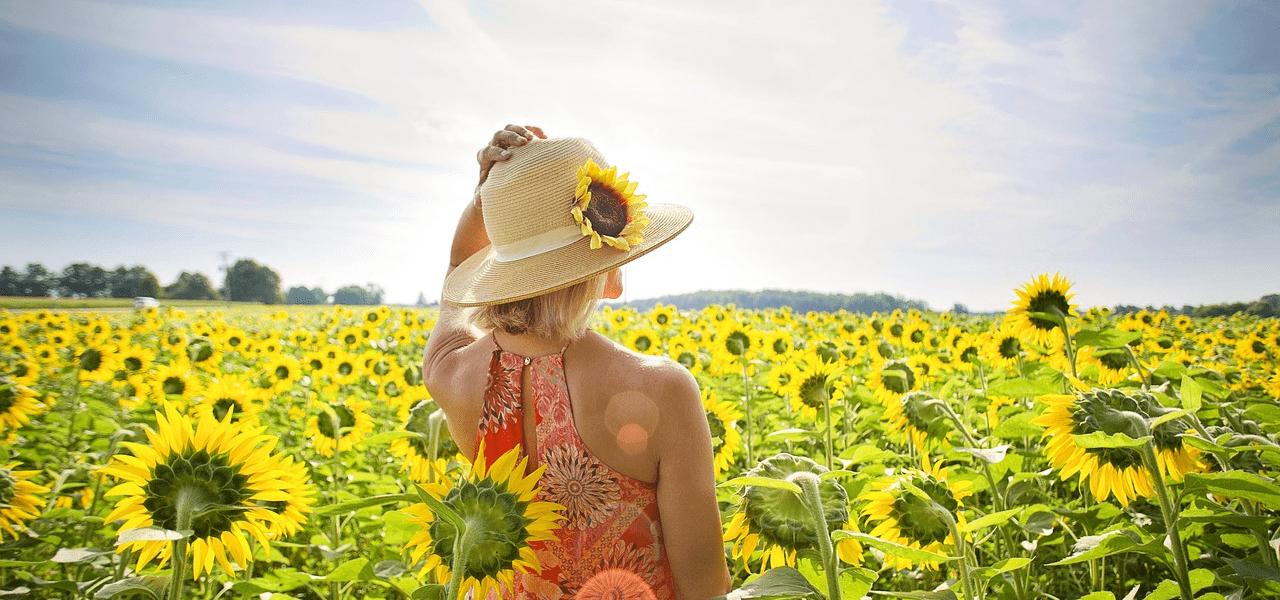 ひまわり畑で将来を感じる女性