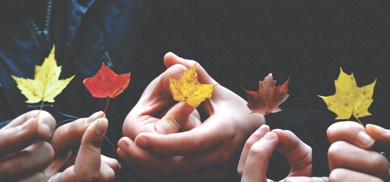 カナダのイメージを持つ落ち葉